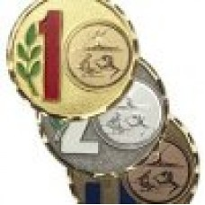 Medaille Santa